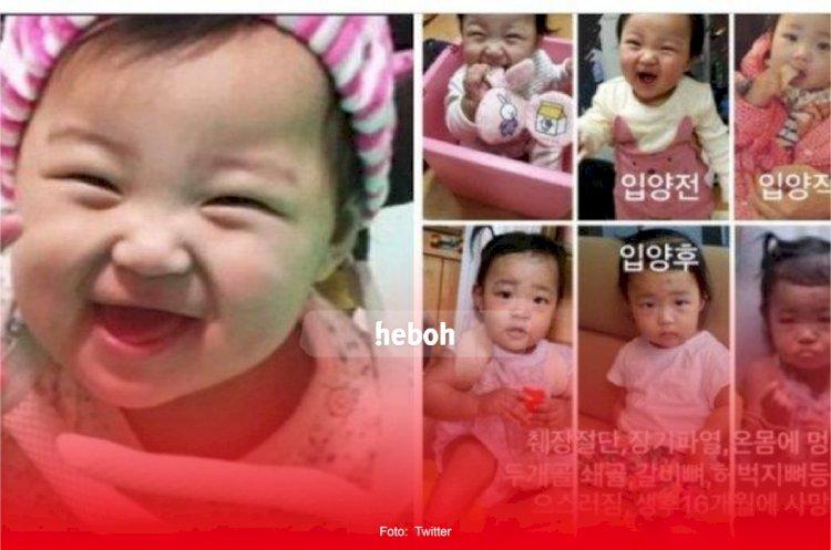 Jang Hansol Ungkap Kisah Tragis Baby Joengin. Tewas Ditangan Orang Tua Angkat!